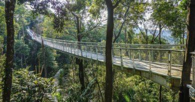 P. Harrison: católicos de Malasia, a la vanguardia de la construcción de puentes