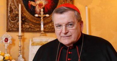 """Cardenal Burke: """"la educación está bajo un ataque feroz"""""""